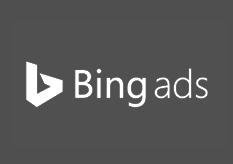 bing ads expert