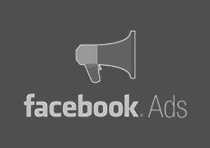 facebook ads consultant