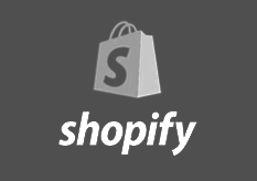 shopify seo expert
