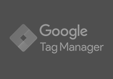 tagmanager-specialist
