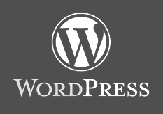 wordpress optimization expert